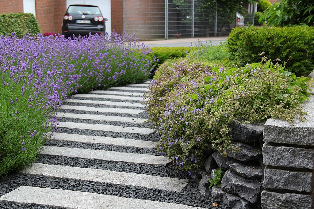 Hausgarten und vorgartenanlage in rhede querbeet wir for Hausgarten gestalten